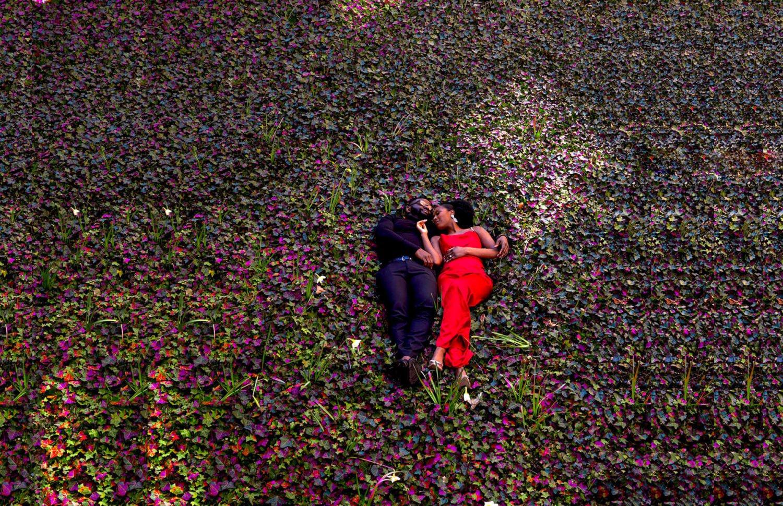Couple in flower fields